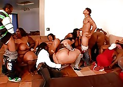 Dazzling bbw orgy fidelity 1