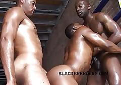 black muscle porn - www xxx free
