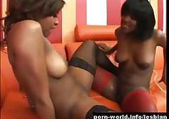 Erotic Perfidious Lesbians surrounding Stitch upstairs Making love